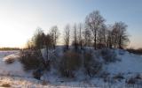Šimonių piliakalnis, Pasvalio seniūnija, Pasvalio r. (Gražvydo Balčiūnaičio nuotr.)