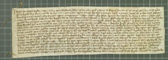 Archiwum Główne Akt Dawnych, Zbiór Dokumentów Pergaminowych, nr 8723