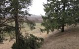 Tričių piliakalnis, Linkuvos seniūnija, Pakruojo r.