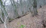 Duobės (Mežakalnio) piliakalnis, Vītiņu pagasts, Auces nov.