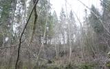 Kamradžų piliakalnis, Penkules pagasts, Dobeles nov.