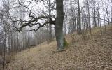 Platkajų piliakalnis, Rubas pagasts, Saldus nov.
