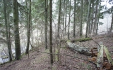 Ciecerės piliakalnis, Cieceres pagasts, Brocēnu nov.