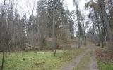 Kartavų piliakalnis, Jaunpils pagasts, Jaunpils nov.