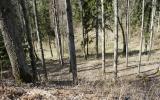 Sparnų piliakalnis, Īles pagasts, Dobeles raj.