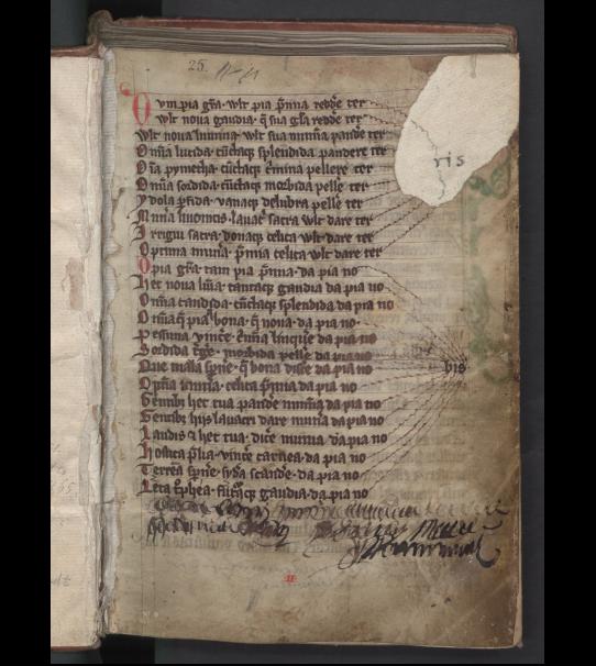 Henricus de Lettis (ca 1187-ca 1259) Chronicon Livoniae, liber I–XXIII, 8